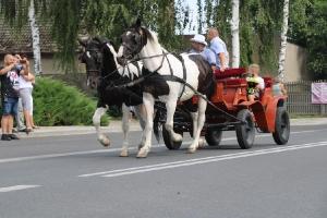 Dożynki w Bukówcu Górnym 2019-31